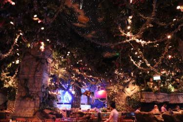 ドバイモール内のジャングルレストランが凄い!動物だけでなく巨大水族館も見えてマジックショーも楽しめる♪食事も激ウマ!