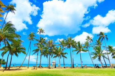 『ボンビーガール』ハワイに移住して起業で年収3000万円になった女性の仕事は○○?
