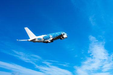 【新型コロナ】ゴールデンウィーク2020の航空会社の予約状況!国内線93%減、国際線98%減か。