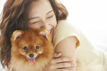 【新型コロナウィルス】人間からペット(犬・猫)へ感染が確認?ペットから人間への感染の可能性は?